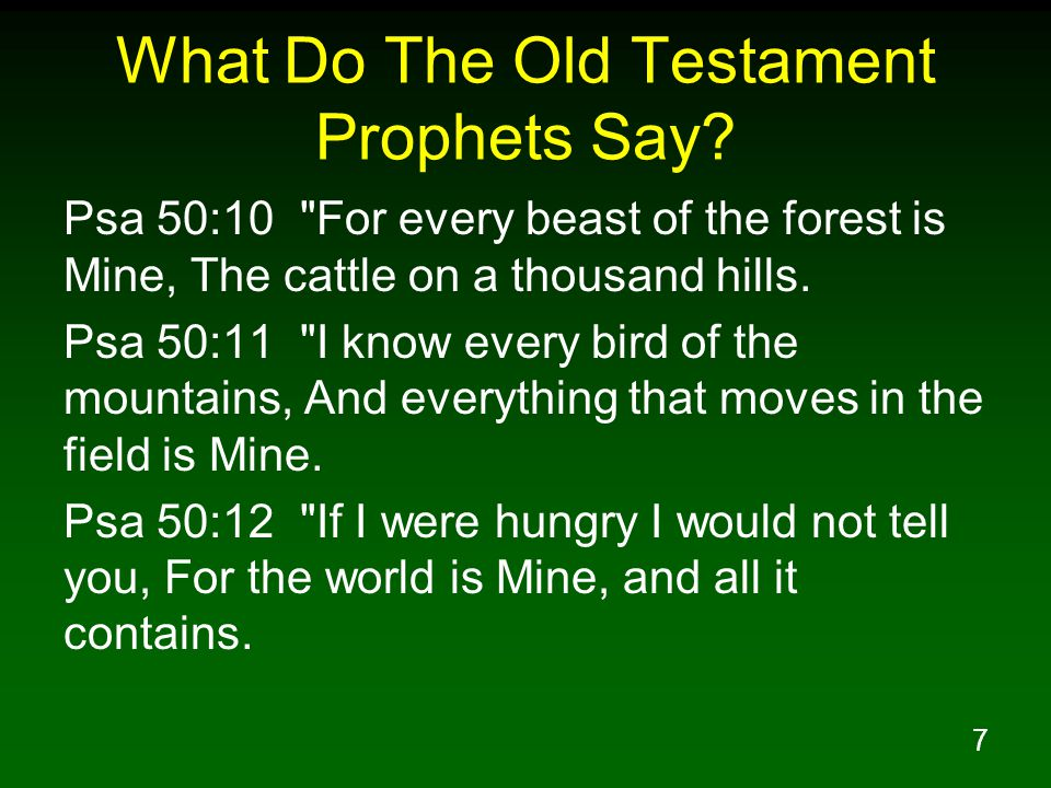 18 What Do The Old Testament Prophets Say.