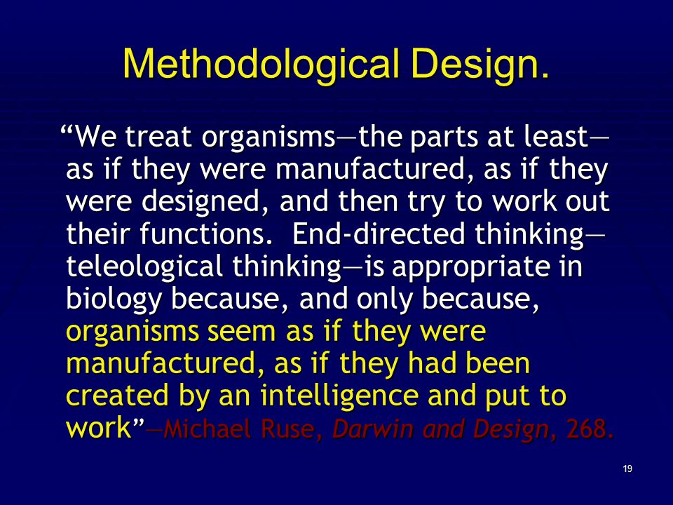19 Methodological Design.