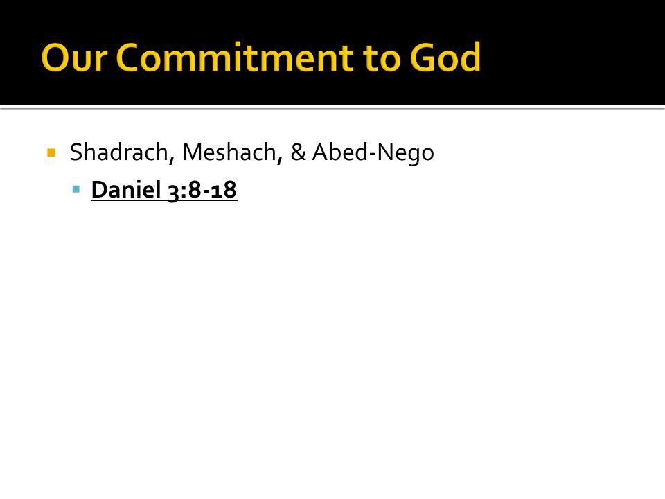  Shadrach, Meshach, & Abed-Nego  Daniel 3:8-18