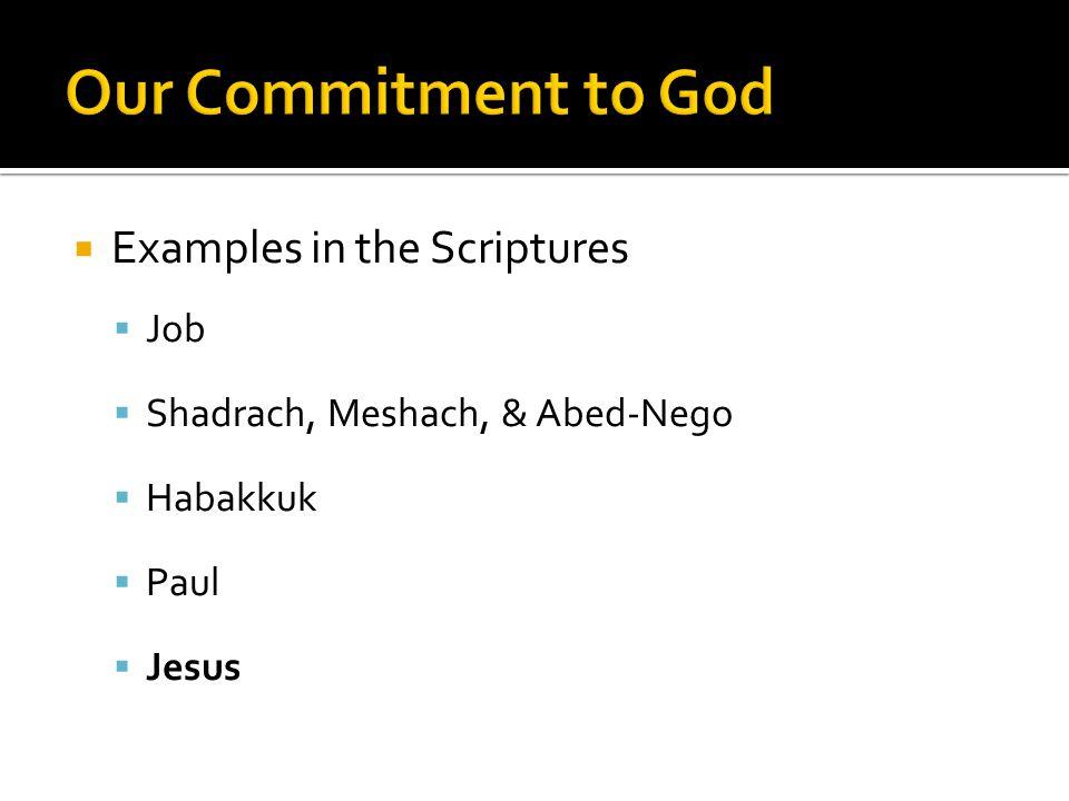  Examples in the Scriptures  Job  Shadrach, Meshach, & Abed-Nego  Habakkuk  Paul  Jesus