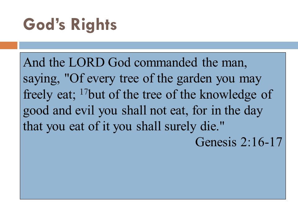 God's Rights  Right To Make Laws  From beginning - Gen. 2:16-17  Today - Heb. 8:8-13