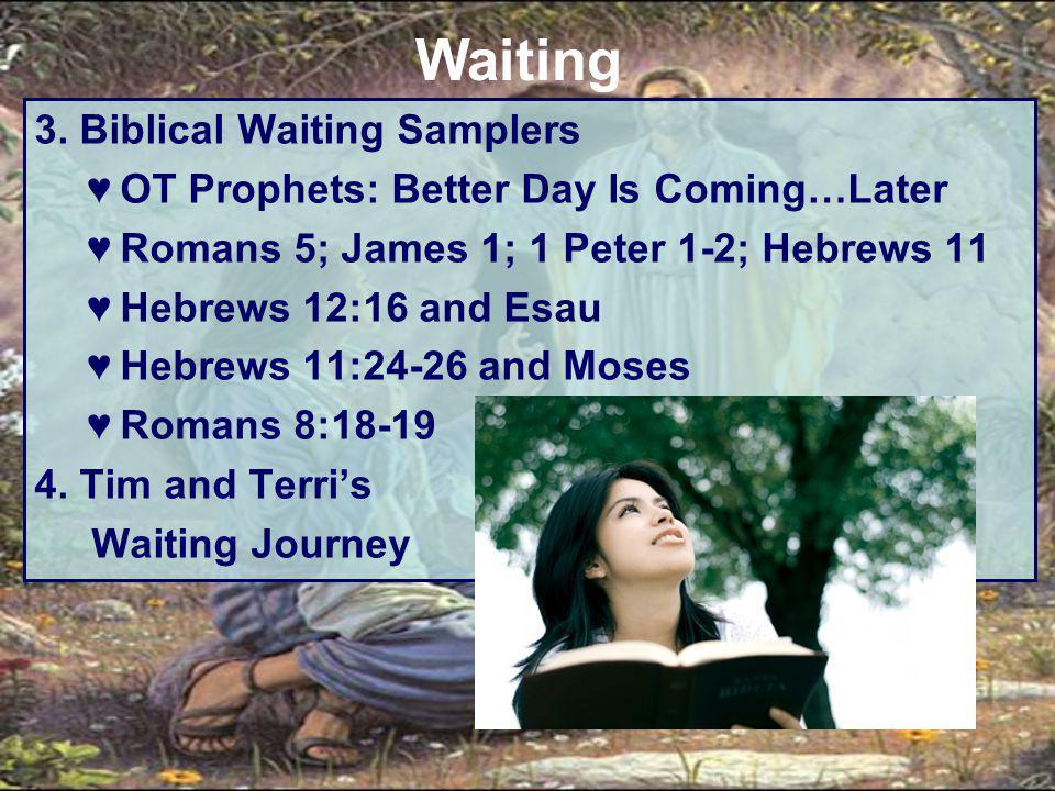 3. Biblical Waiting Samplers ♥OT Prophets: Better Day Is Coming…Later ♥Romans 5; James 1; 1 Peter 1-2; Hebrews 11 ♥Hebrews 12:16 and Esau ♥Hebrews 11: