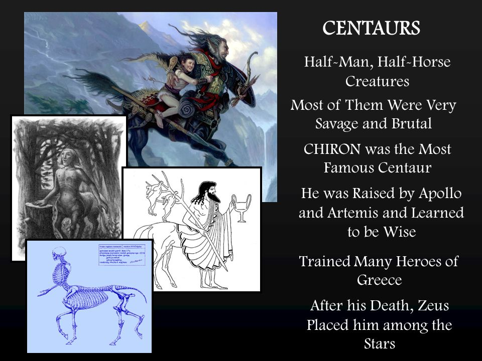 CENTAURS Half-Man, Half-Horse Creatures CHIRON was the Most Famous Centaur Most of Them Were Very Savage and Brutal He was Raised by Apollo and Artemi
