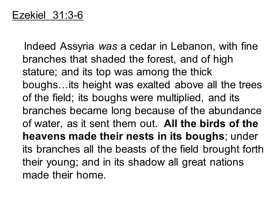 Ezekiel 31:3-6 Indeed Assyria was a cedar in Lebanon, with fine branches that shaded the forest, and of high stature; and its top was among the thick