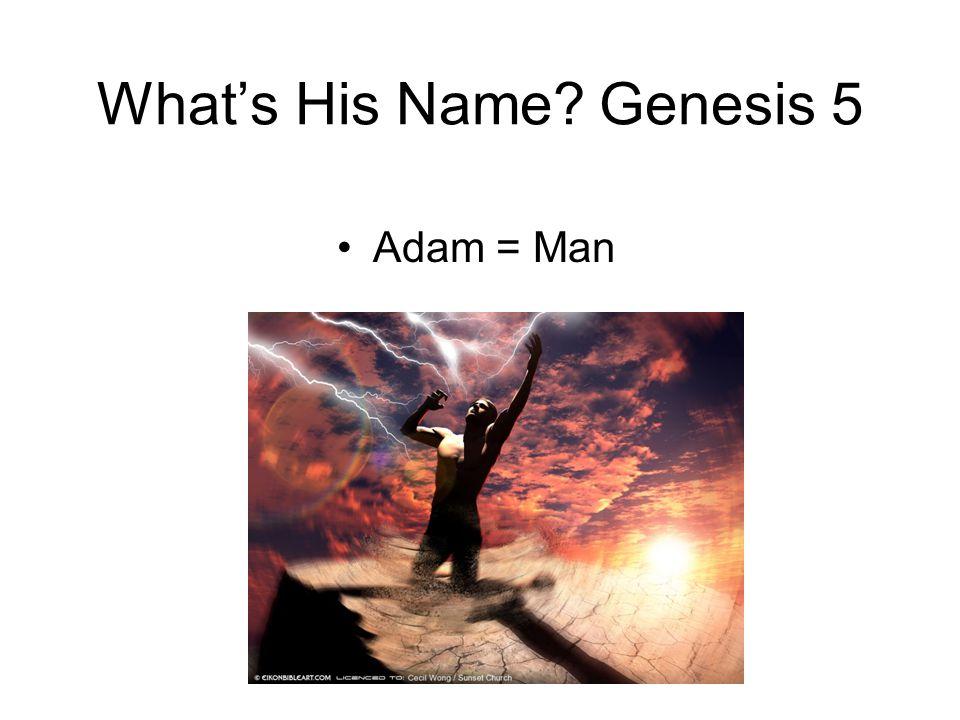 What's His Name Genesis 5 Adam = Man