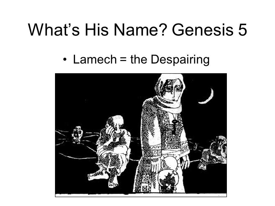 What's His Name Genesis 5 Lamech = the Despairing