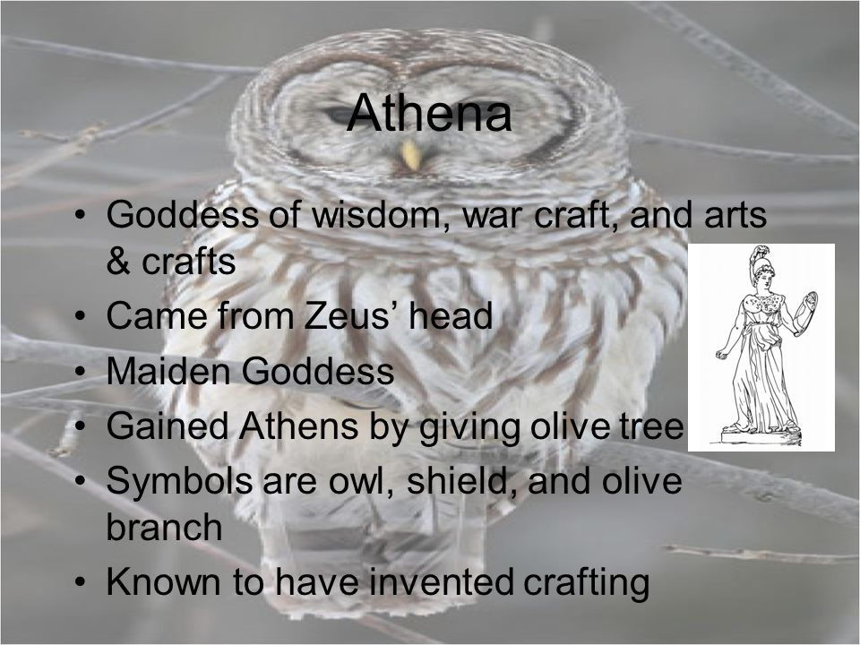 Athena Goddess of wisdom, war craft, and arts & crafts Came from Zeus' head Maiden Goddess Gained Athens by giving olive tree Symbols are owl, shield, and olive branch Known to have invented crafting