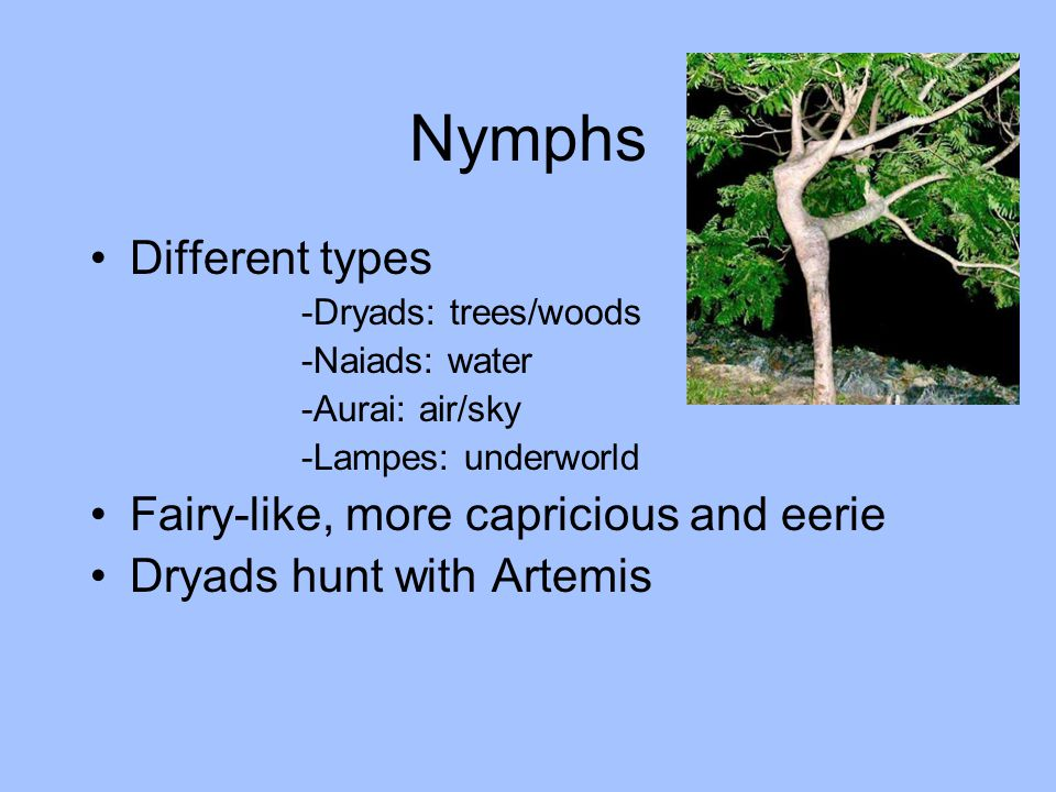 Nymphs Different types -Dryads: trees/woods -Naiads: water -Aurai: air/sky -Lampes: underworld Fairy-like, more capricious and eerie Dryads hunt with Artemis