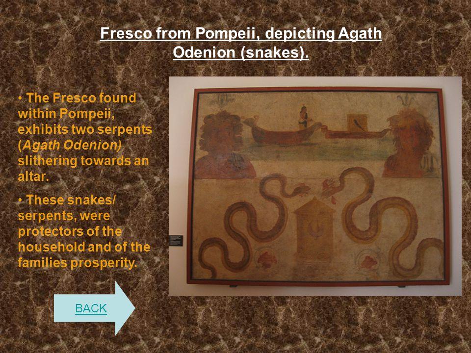 Fresco from Pompeii, depicting Agath Odenion (snakes). The Fresco found within Pompeii, exhibits two serpents (Agath Odenion) slithering towards an al