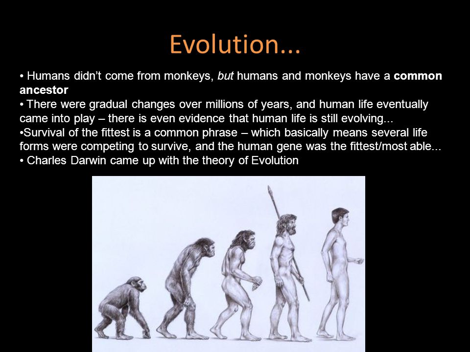 Evolution... Humans didn't come from monkeys, but humans and monkeys have a common ancestor There were gradual changes over millions of years, and hum