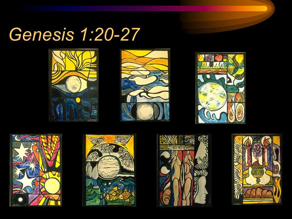 Genesis 1:20-27