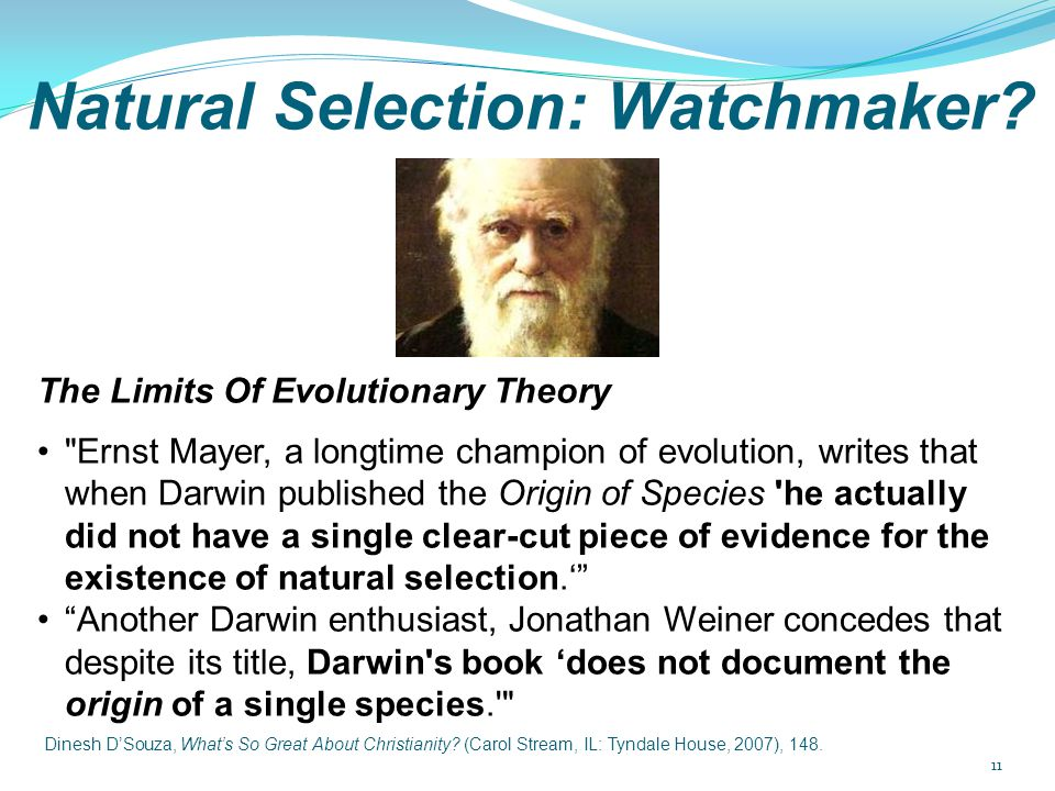 Natural Selection: Watchmaker? The Limits Of Evolutionary Theory