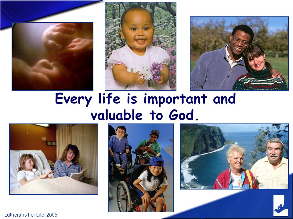 F Lutherans For Life, 2005 Every life is important and valuable to God.