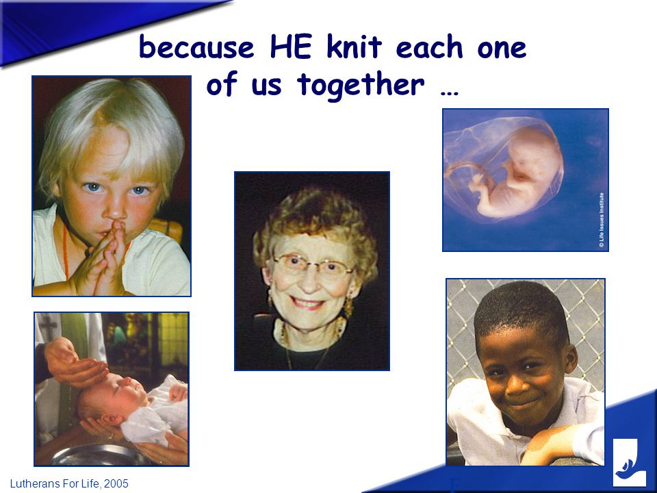 F Lutherans For Life, 2005 because HE knit each one of us together …