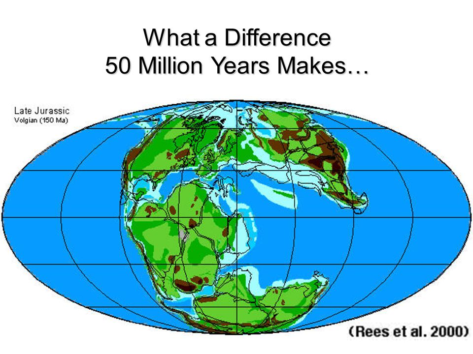What a Difference 50 Million Years Makes…