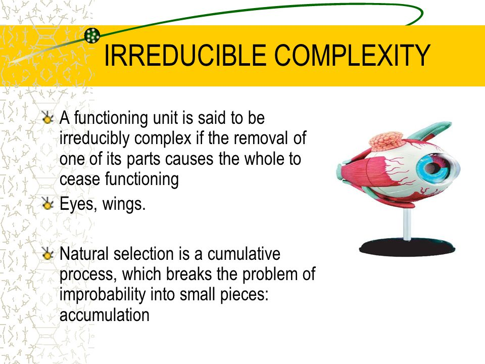IRREDUCIBLE COMPLEXITY A functioning unit is said to be irreducibly complex if the removal of one of its parts causes the whole to cease functioning Eyes, wings.