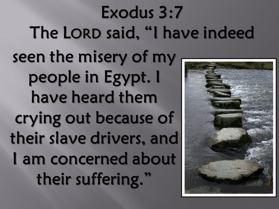 Exodus 3:7 The L ORD said, I have indeed seen the misery of my people in Egypt.