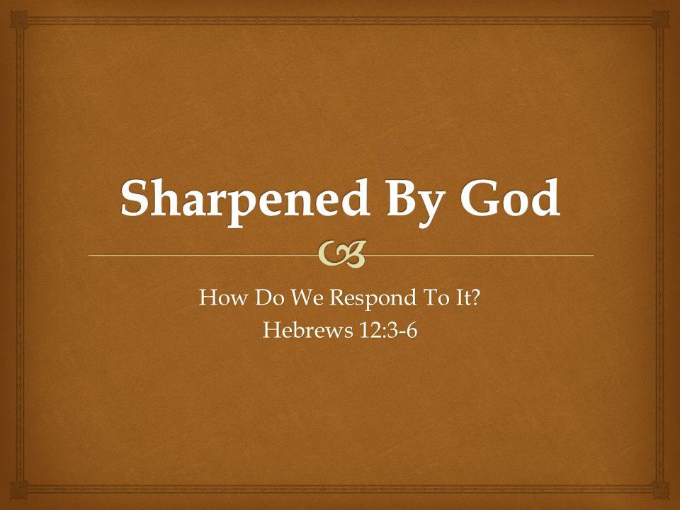 How Do We Respond To It? Hebrews 12:3-6