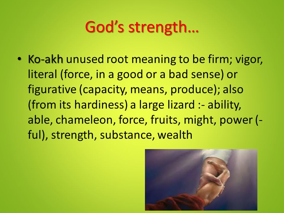 God's strength… Ko-akh Ko-akh unused root meaning to be firm; vigor, literal (force, in a good or a bad sense) or figurative (capacity, means, produce); also (from its hardiness) a large lizard :- ability, able, chameleon, force, fruits, might, power (- ful), strength, substance, wealth