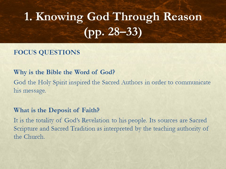 FOCUS QUESTIONS What gifts has God given to human beings in their nature.