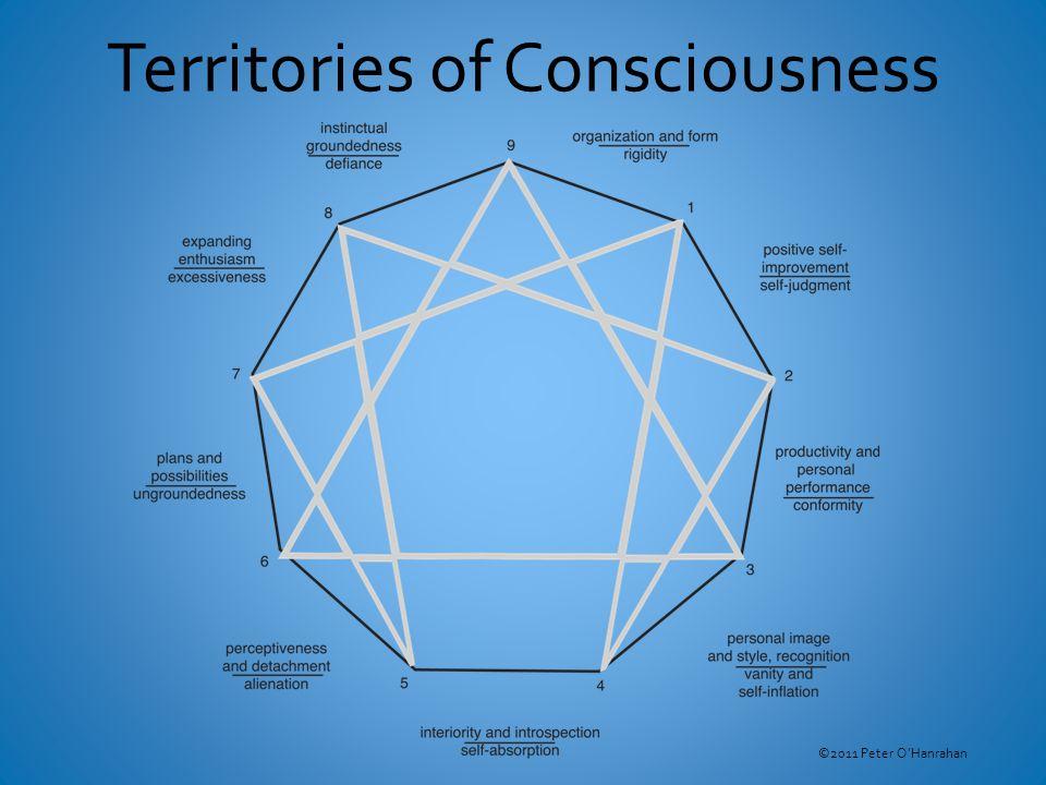 Territories of Consciousness ©2011 Peter O'Hanrahan