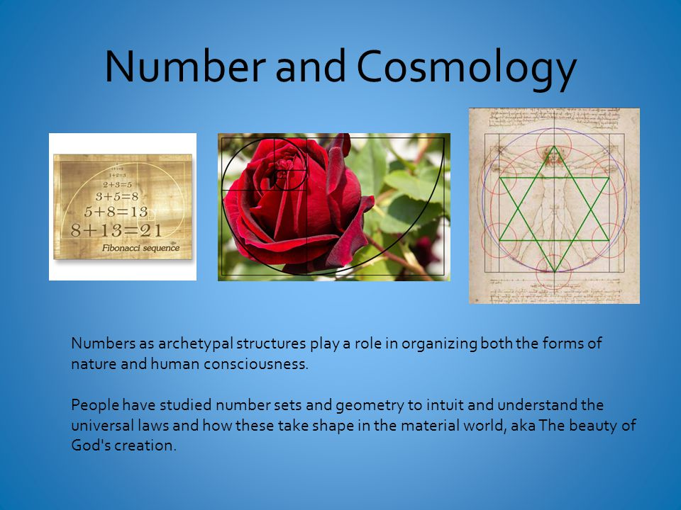Number and Cosmology Numbers as archetypal structures play a role in organizing both the forms of nature and human consciousness.