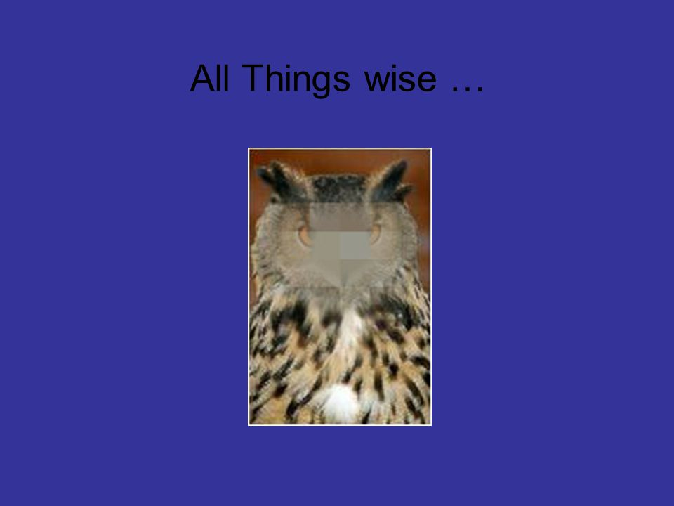 All Things wise …