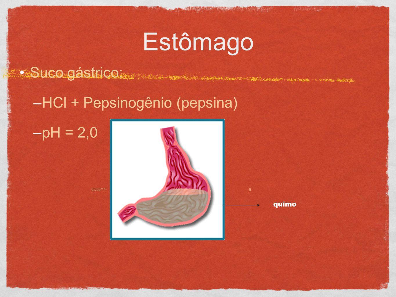 05/02/116 Estômago Suco gástrico: –HCl + Pepsinogênio (pepsina) –pH = 2,0 quimo