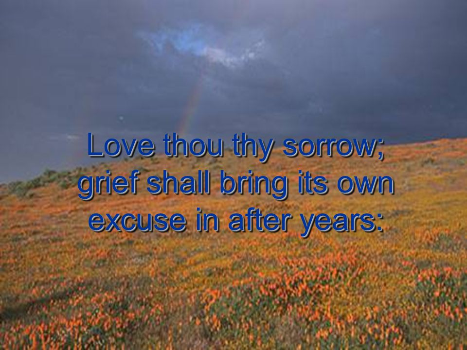 Love thou thy sorrow; grief shall bring its own excuse in after years:
