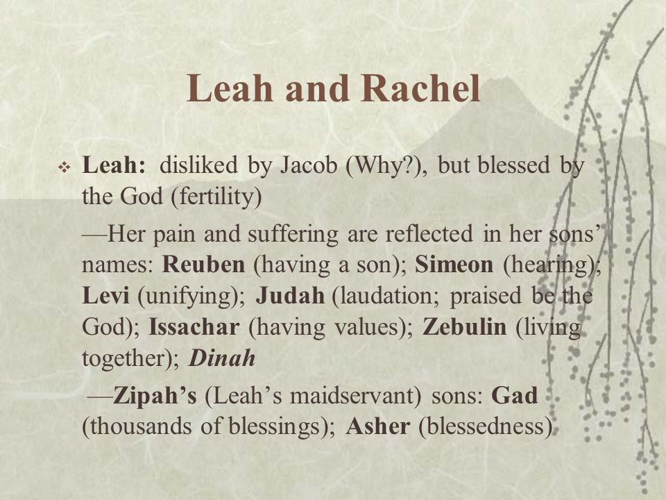 Leah and Rachel  Leah: disliked by Jacob (Why ), but blessed by the God (fertility) —Her pain and suffering are reflected in her sons' names: Reuben (having a son); Simeon (hearing); Levi (unifying); Judah (laudation; praised be the God); Issachar (having values); Zebulin (living together); Dinah —Zipah's (Leah's maidservant) sons: Gad (thousands of blessings); Asher (blessedness)