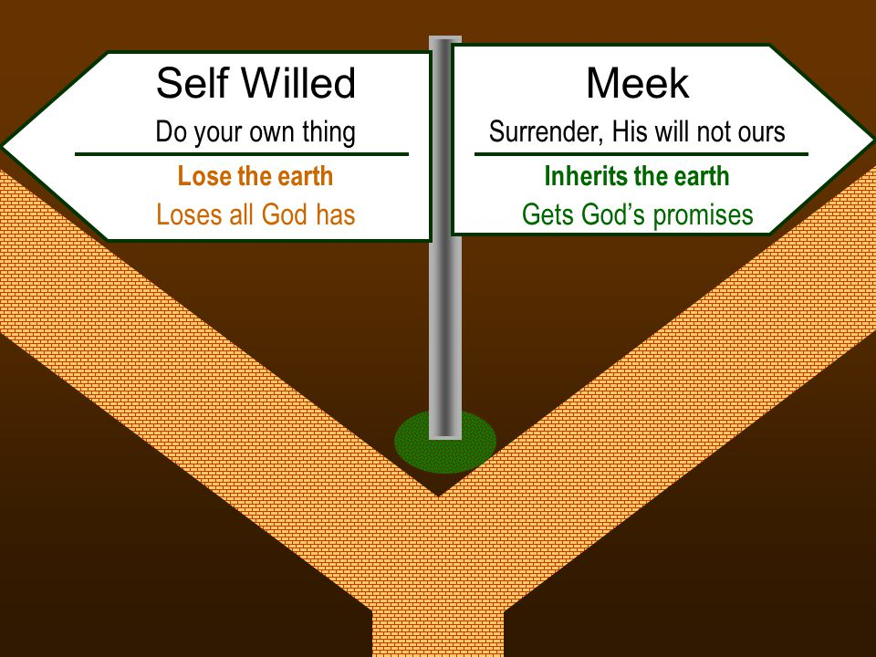 Meek Surrender, His will not ours Inherits the earth Gets God's promises Self Willed Do your own thing Lose the earth Loses all God has