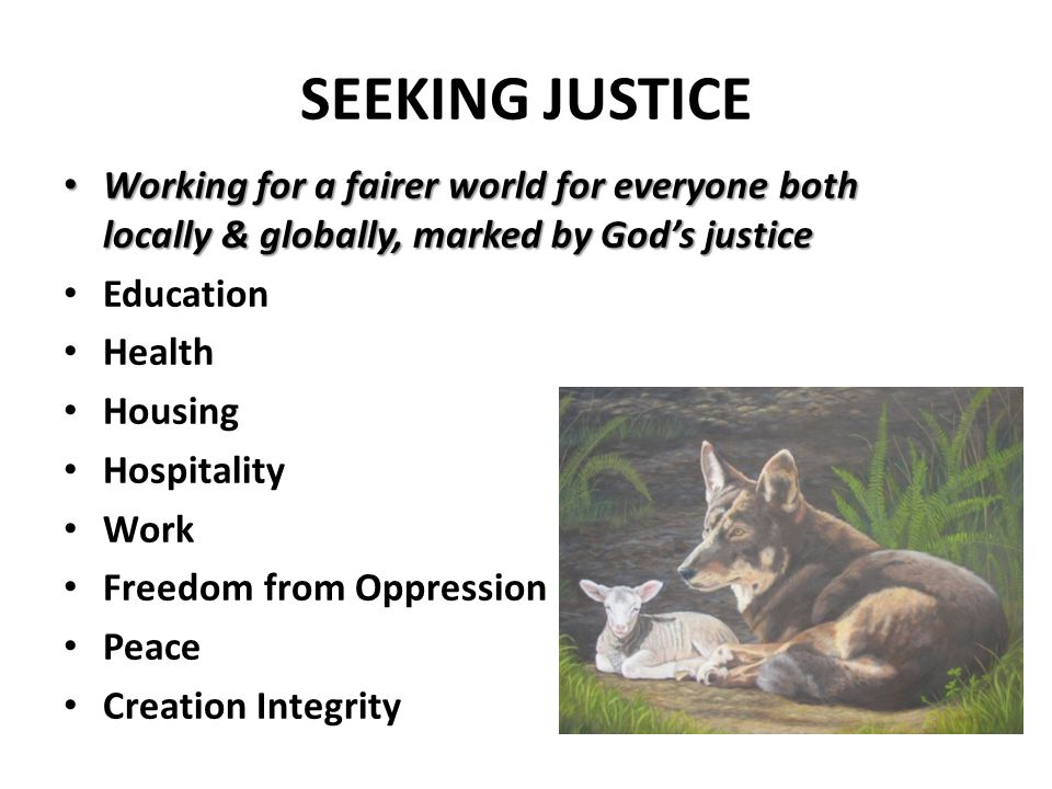 SEEKING JUSTICE Working for a fairer world for everyone both locally & globally, marked by God's justice Education Health Housing Hospitality Work Freedom from Oppression Peace Creation Integrity