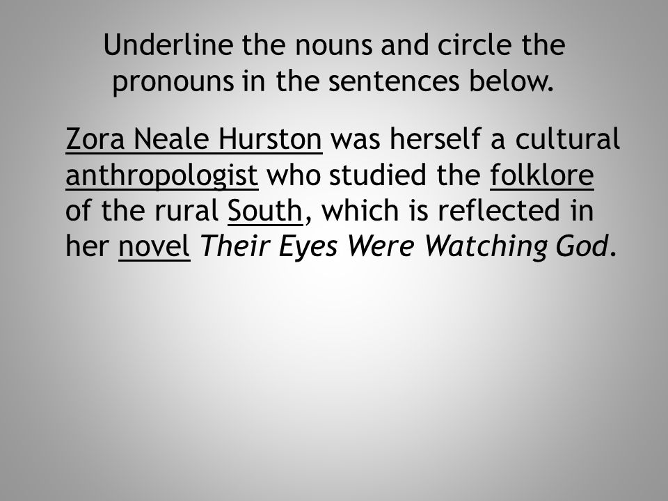 Underline the nouns and circle the pronouns in the sentences below.