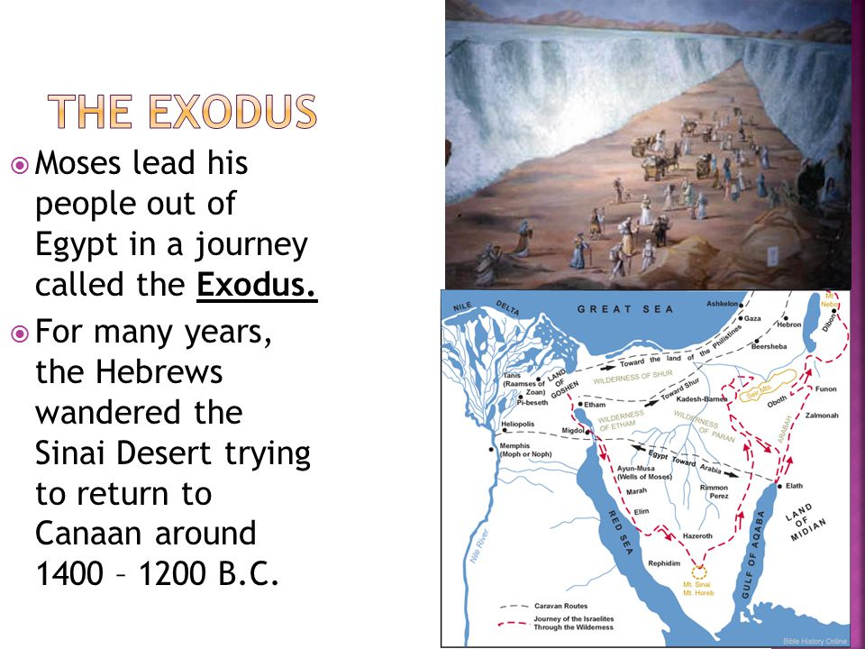 Moses lead his people out of Egypt in a journey called the Exodus.  For many years, the Hebrews wandered the Sinai Desert trying to return to Canaa