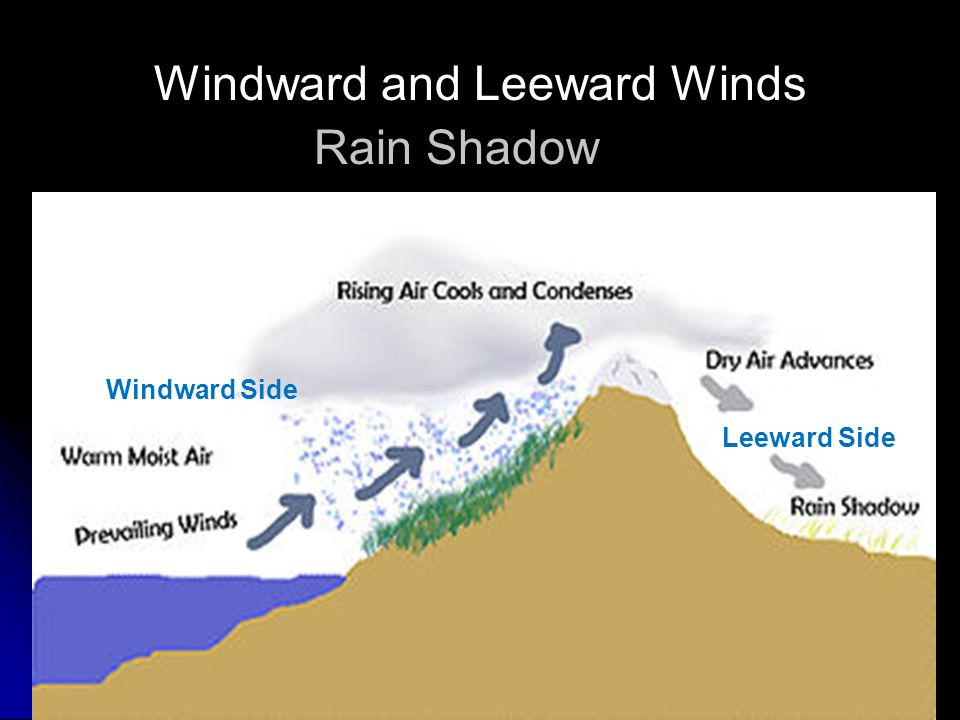 A nor'easter is a type of macro-scale storm along the East Coast of the United States and Atlantic Canada, so named because the winds come from the no