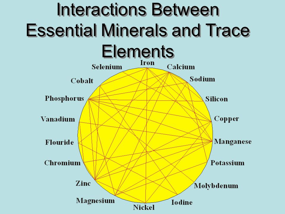 Interactions Between Essential Minerals and Trace Elements