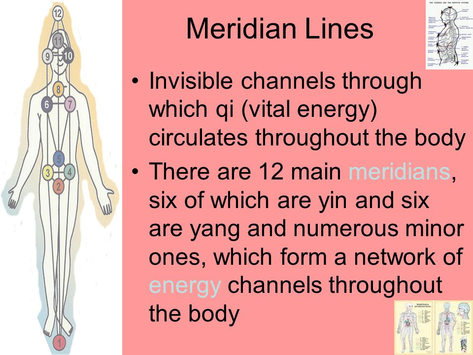 Meridian Lines Invisible channels through which qi (vital energy) circulates throughout the body There are 12 main meridians, six of which are yin and six are yang and numerous minor ones, which form a network of energy channels throughout the body