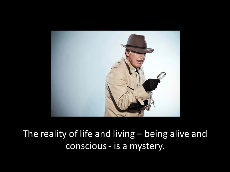 The reality of life and living – being alive and conscious - is a mystery.