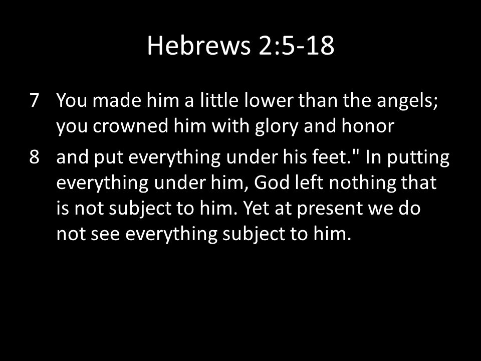 Hebrews 2:5-18 7You made him a little lower than the angels; you crowned him with glory and honor 8and put everything under his feet.
