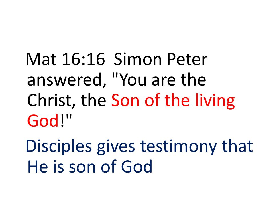 Mat 16:16 Simon Peter answered, You are the Christ, the Son of the living God! Disciples gives testimony that He is son of God