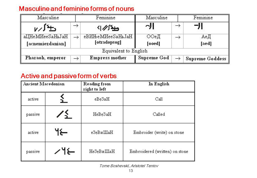 Tome Boshevski, Aristotel Tentov 13 Active and passive form of verbs Masculine and feminine forms of nouns