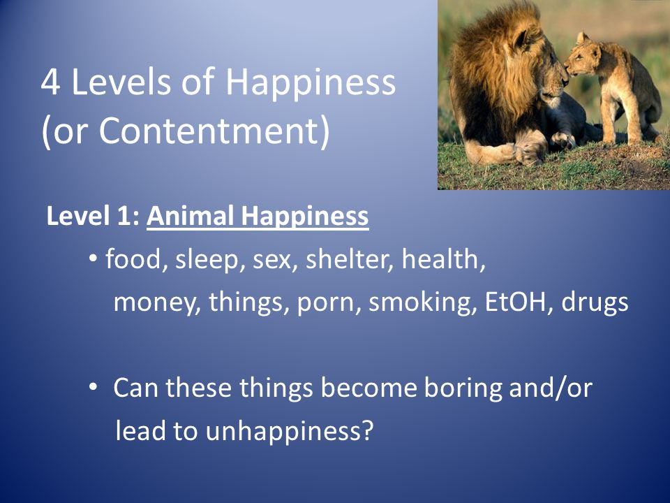 Level 1: Animal Happiness food, sleep, sex, shelter, health, money, things, porn, smoking, EtOH, drugs Can these things become boring and/or lead to unhappiness.
