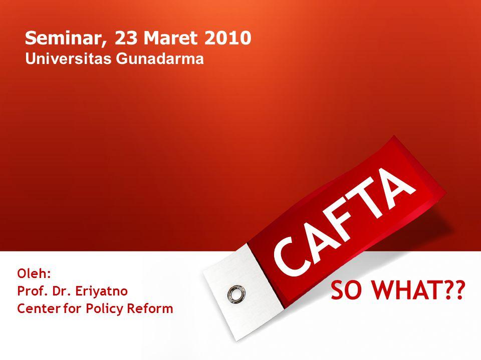 Seminar, 23 Maret 2010 Universitas Gunadarma CAFTA SO WHAT .