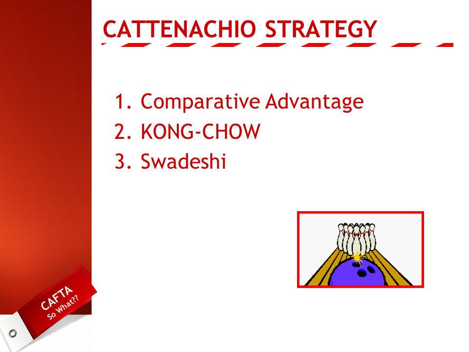 CATTENACHIO STRATEGY 1.Comparative Advantage 2.KONG-CHOW 3.Swadeshi CAFTA So What