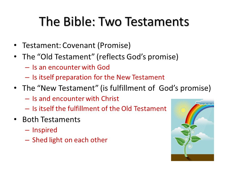 The Bible: Two Testaments Testament: Covenant (Promise) The Old Testament (reflects God's promise) – Is an encounter with God – Is itself preparation for the New Testament The New Testament (is fulfillment of God's promise) – Is and encounter with Christ – Is itself the fulfillment of the Old Testament Both Testaments – Inspired – Shed light on each other