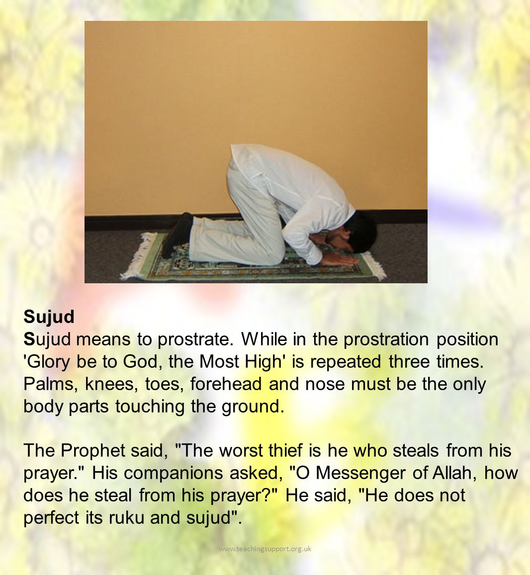 Sujud Sujud means to prostrate.