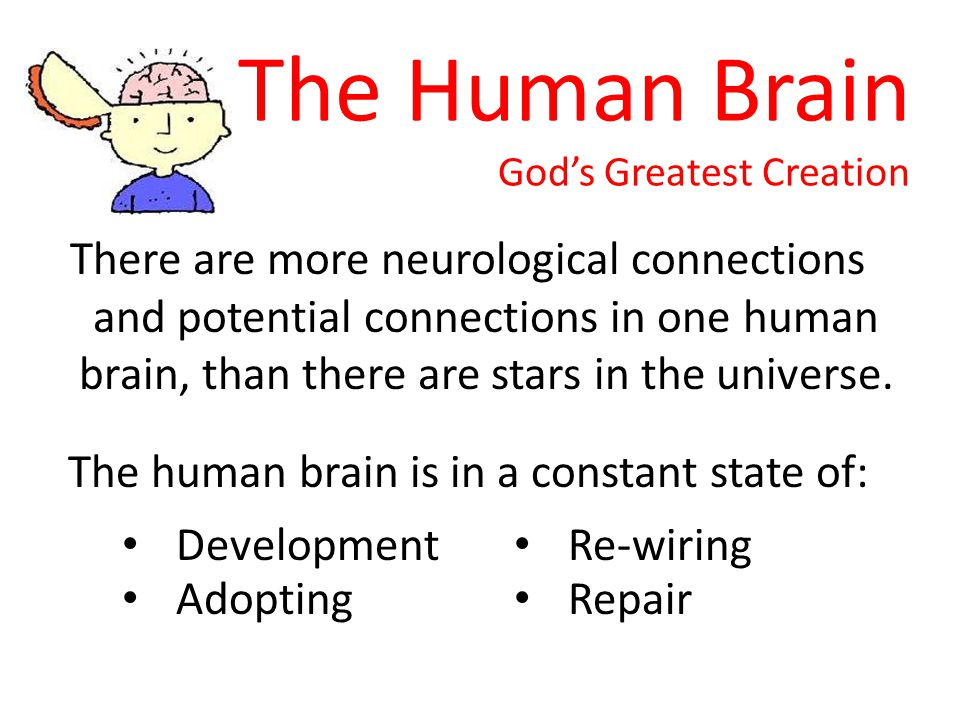 The Human Brain God's Greatest Creation There are more neurological connections and potential connections in one human brain, than there are stars in the universe.