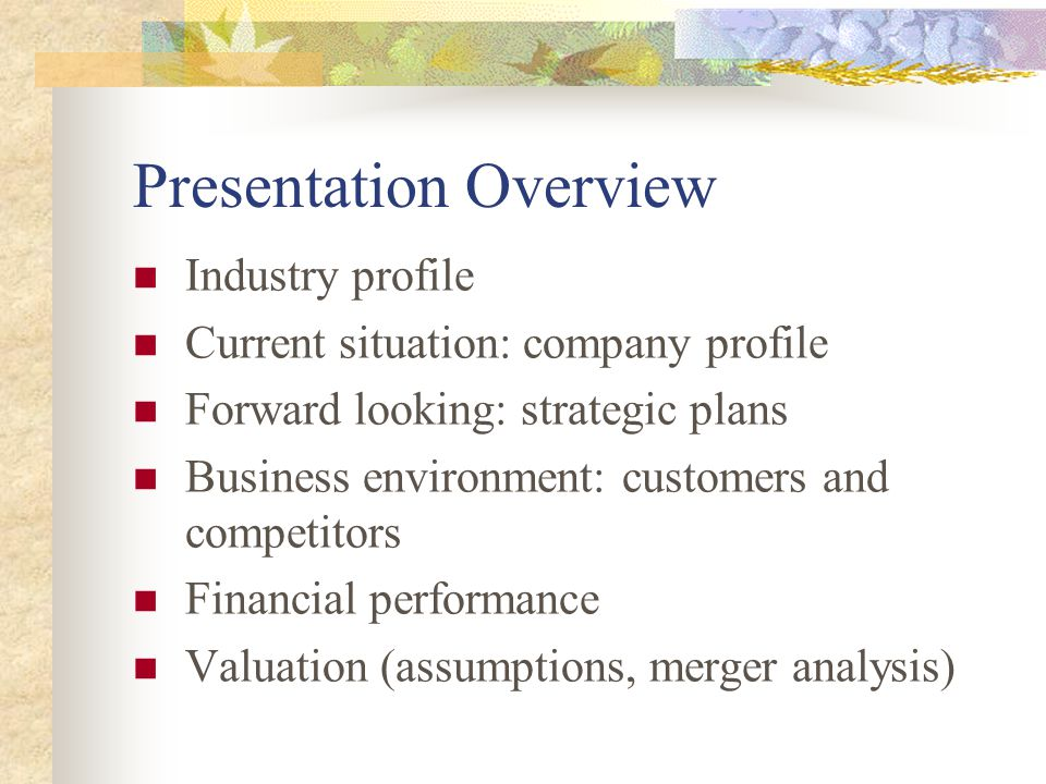 Presentation Overview Industry profile Current situation: company profile Forward looking: strategic plans Business environment: customers and competitors Financial performance Valuation (assumptions, merger analysis)