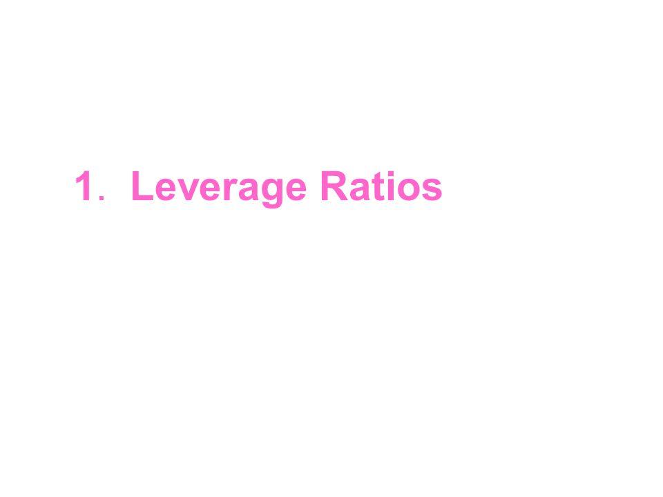 1. Leverage Ratios
