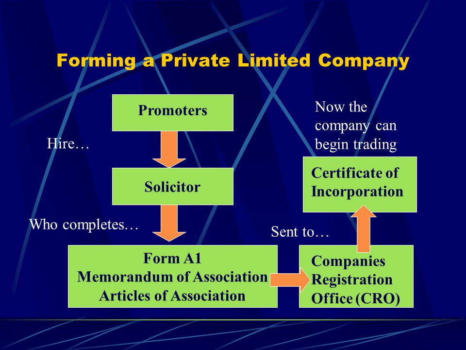 Board of Directors Managing Director/ Chief Executive Officer Shareholders IT Manager Marketing Manager Finance Manager Production Manager Elect… Appoint… The owners of the company (1-99) The people elected to run the company (max.